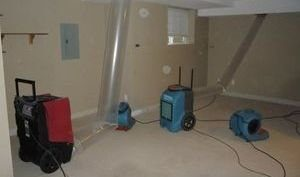 Drying Out Living Room After A Leak To Prevent Mold