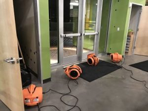 water-damage-restoration-fans