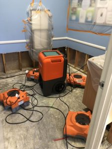Drying and Dehumidifying Services